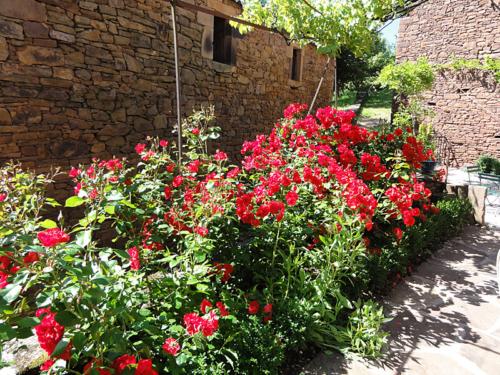 Plus d\'images : terrasse et jardin du gîte à Ségézy | Gîte ...